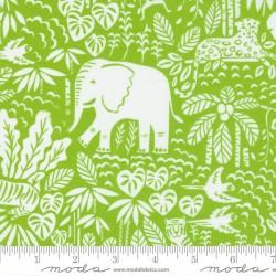 The Jungle Scene - SEEDLING