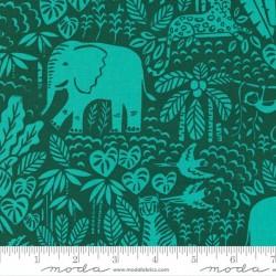 The Jungle Scene - PALM