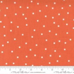 Skipping Square Dot - STRAWBERRY