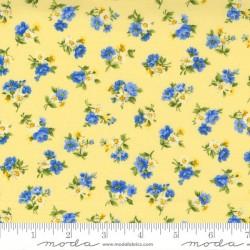 Little Bloom - YELLOW