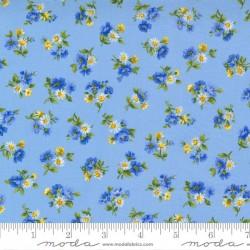 Little Bloom - SKY/MULTI