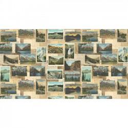 Mountain Postcards - TAN