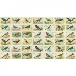 Bird Cages - NATURAL