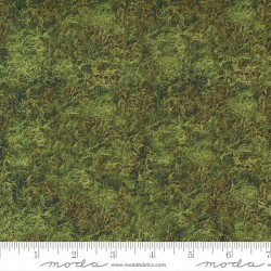Groundcover - FOREST MOSS