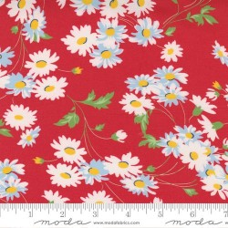 Real Daisy - RED