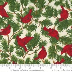 Cardinal Song - SNOW