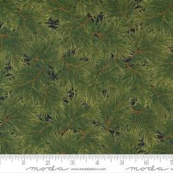 Pine Bough - BLACK