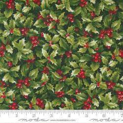 Hollyberry - EVERGREEN