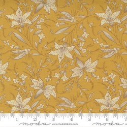 Frome - INDIA YELLOW