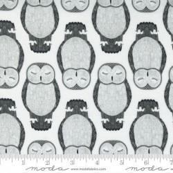Sleeping Owls - MOON
