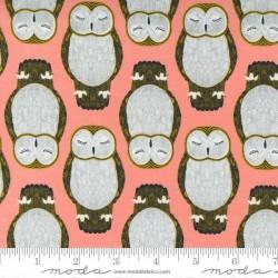 Sleeping Owls - PRIMROSE