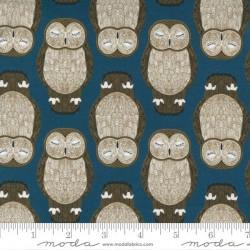 Sleeping Owls - LAKE