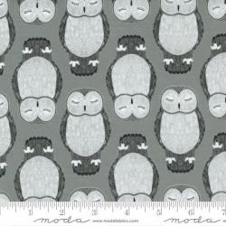Sleeping Owls - RAINCLOUD