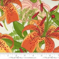 Carolina Lilies - CREAM