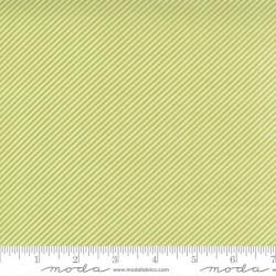Scrumptious Stripe - GREEN