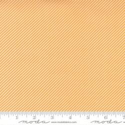 Scrumptious Stripe - ORANGE