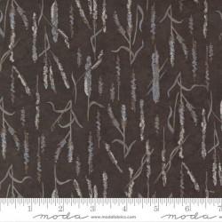 Marsh Grasses - COCOA