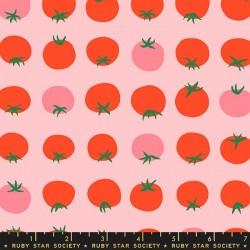 Tomato - COTTON CANDY