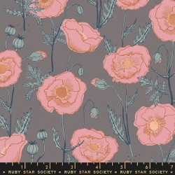 Icelandic Poppies - CLOUD