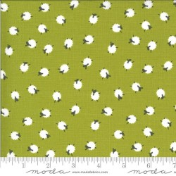 Bah Bah Baby Sheep - GREEN