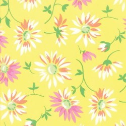 LAZY DAISIES - YELLOW
