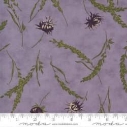 Wild Flowers - LILAC