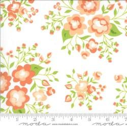 Rose Garden - CLOUD