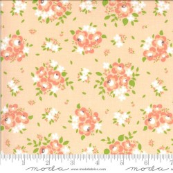 Spring Blooms - APRICOT