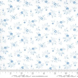 Winter Rose - WINTER WHITE