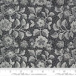 Lacy - CAVIAR