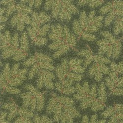 PINE BRANCHES - EVERGREEN