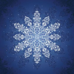 SNOWFLAKE PACKAGED DIGITAL PANEL - ICE