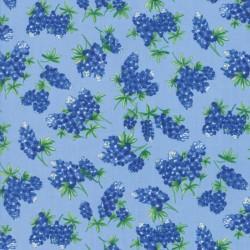 Tossed Bluebonnets - SKY
