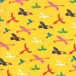 Birds - BANANA