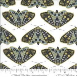 Dainty Moths - IVORY/SKY