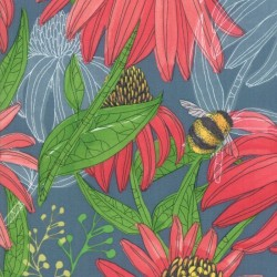 Coneflower - TEAL
