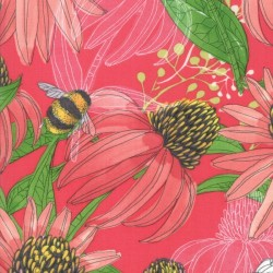 Coneflower - PASSION