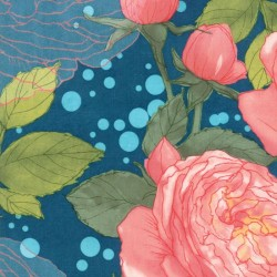 Cabbage Rose - NIGHT