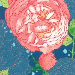 "Cabbage Rose Rayon (57"" wide) - NIGHT"