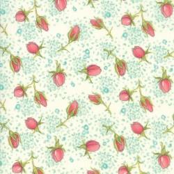 Rose Buds - CREAM