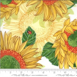 Sunflowers - CREAM