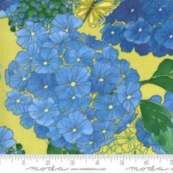 Hydrangeas Floral - SUNLIT