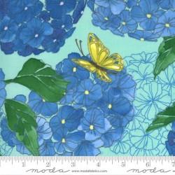 Hydrangeas Floral - DEWDROP