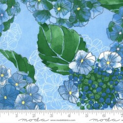 Hydrangeas Floral - SKY