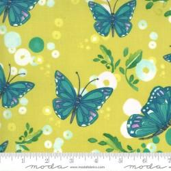 Butterflies - SUNLIT