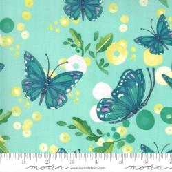 Butterflies - DEWDROP