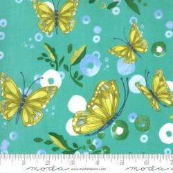 Butterflies - HORIZON