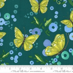 Butterflies - POND