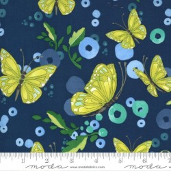 Butterflies - MIDNIGHT