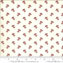 Thistle Bloom - CREAM